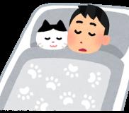 😹可愛いけど困る夜泣きする猫の問題