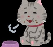 😼【手作りキャットフード】猫が大好きなささみ料理