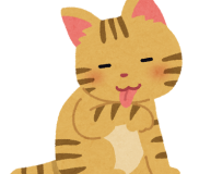 😸【猫問題解決策 / 一般投稿】🐾いたずら好きな猫を一瞬で変えた方法🐾