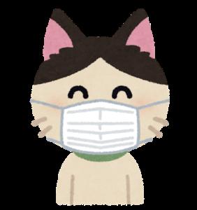 😽猫にもコロナが感染!猫コロナの症状は?猫から人に遷るの?